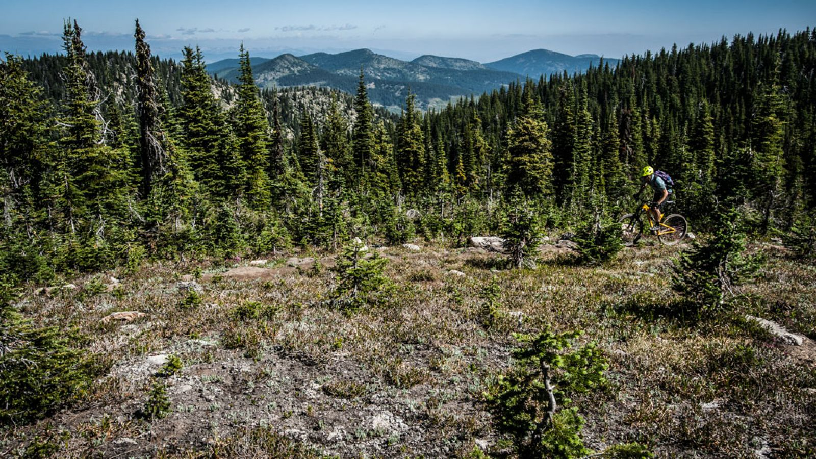 The Rossland area is home to some of North America's top trails.