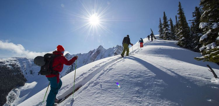 Kicking Horse Powder Tours