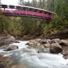 Kaslo River Trails includes two beautiful bridges.