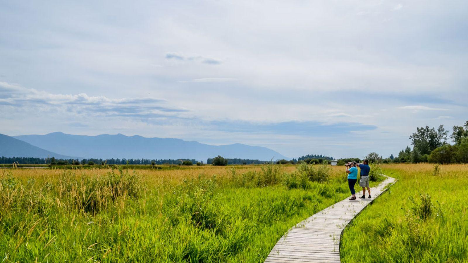 Boardwalk at the Creston Valley Wildlife Centre.
