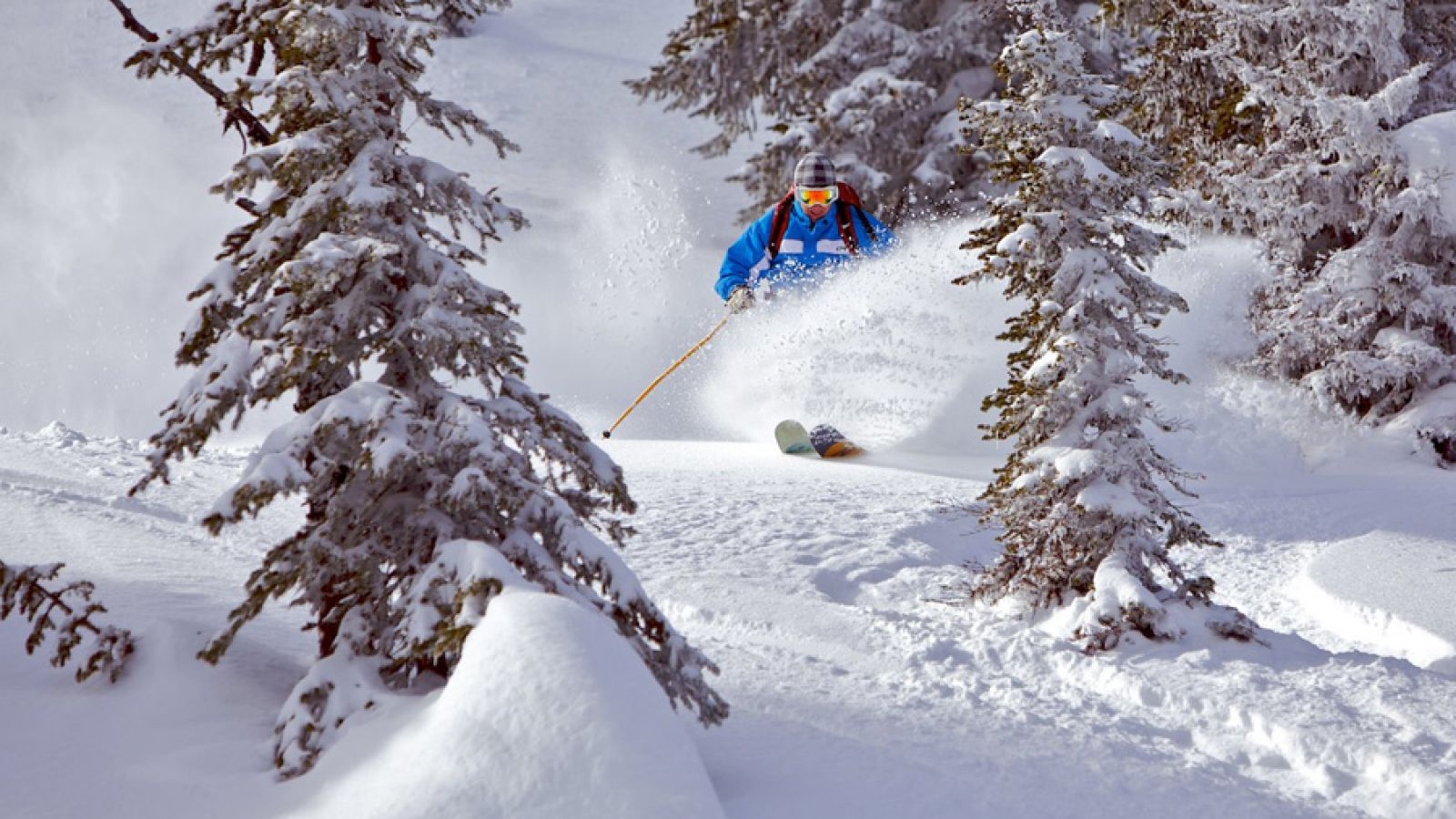 Float in the deep, dry powder.