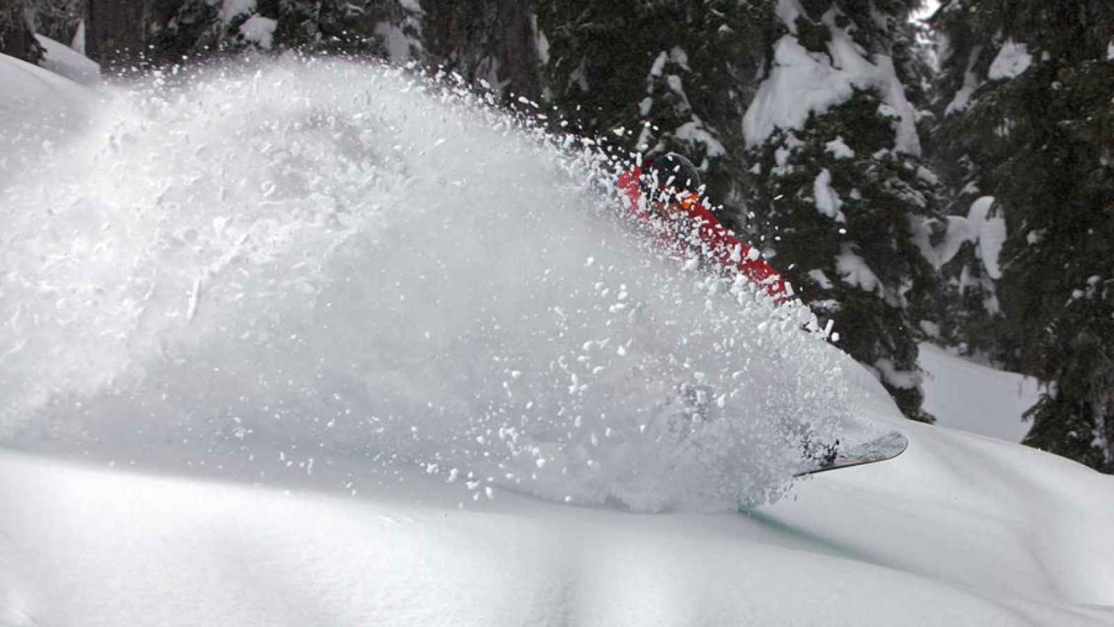 Wonderful powder skiing.