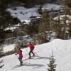 The Fernie Nordic Centre trails are located near Mt Fernie Provincial Park.
