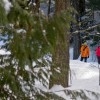 Wonderful cross-country skiing trails at Island Lake Lodge.
