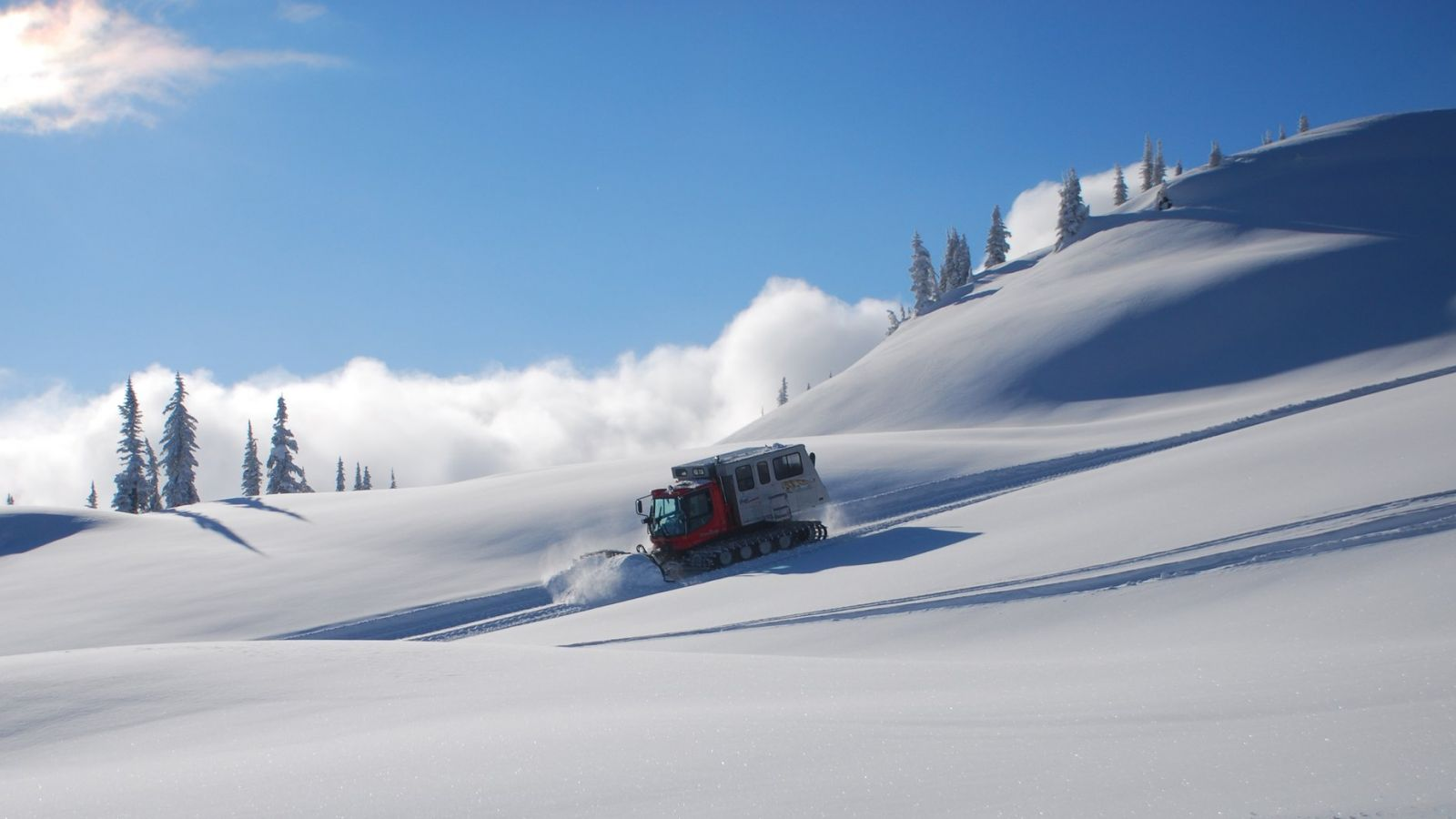Pristine snow.