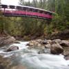 Kaslo River Trails.