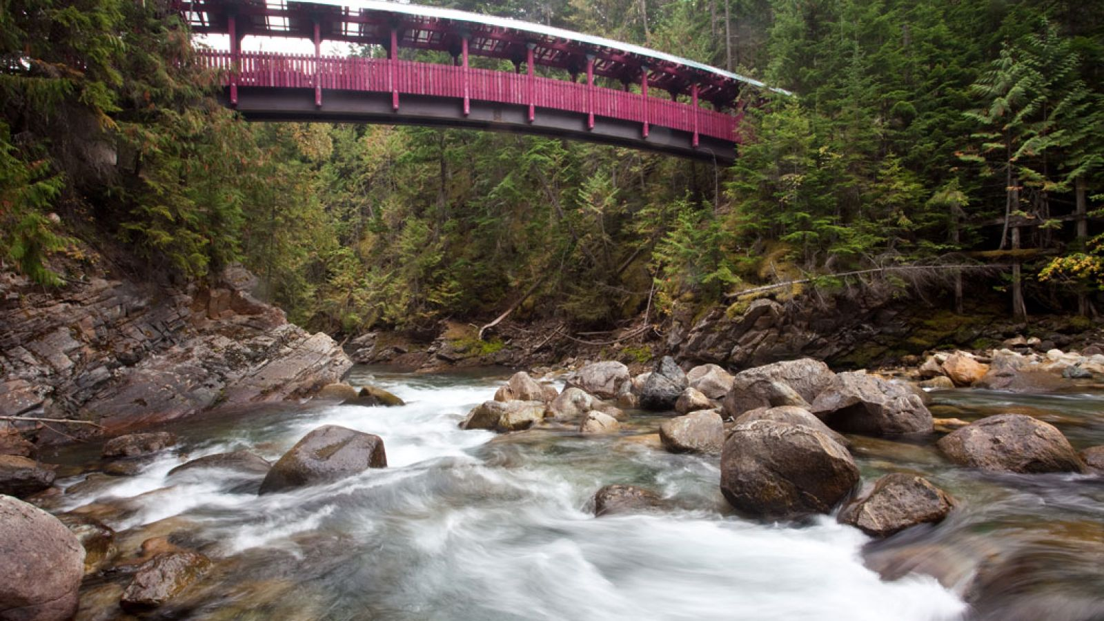 Kaslo River Trails.