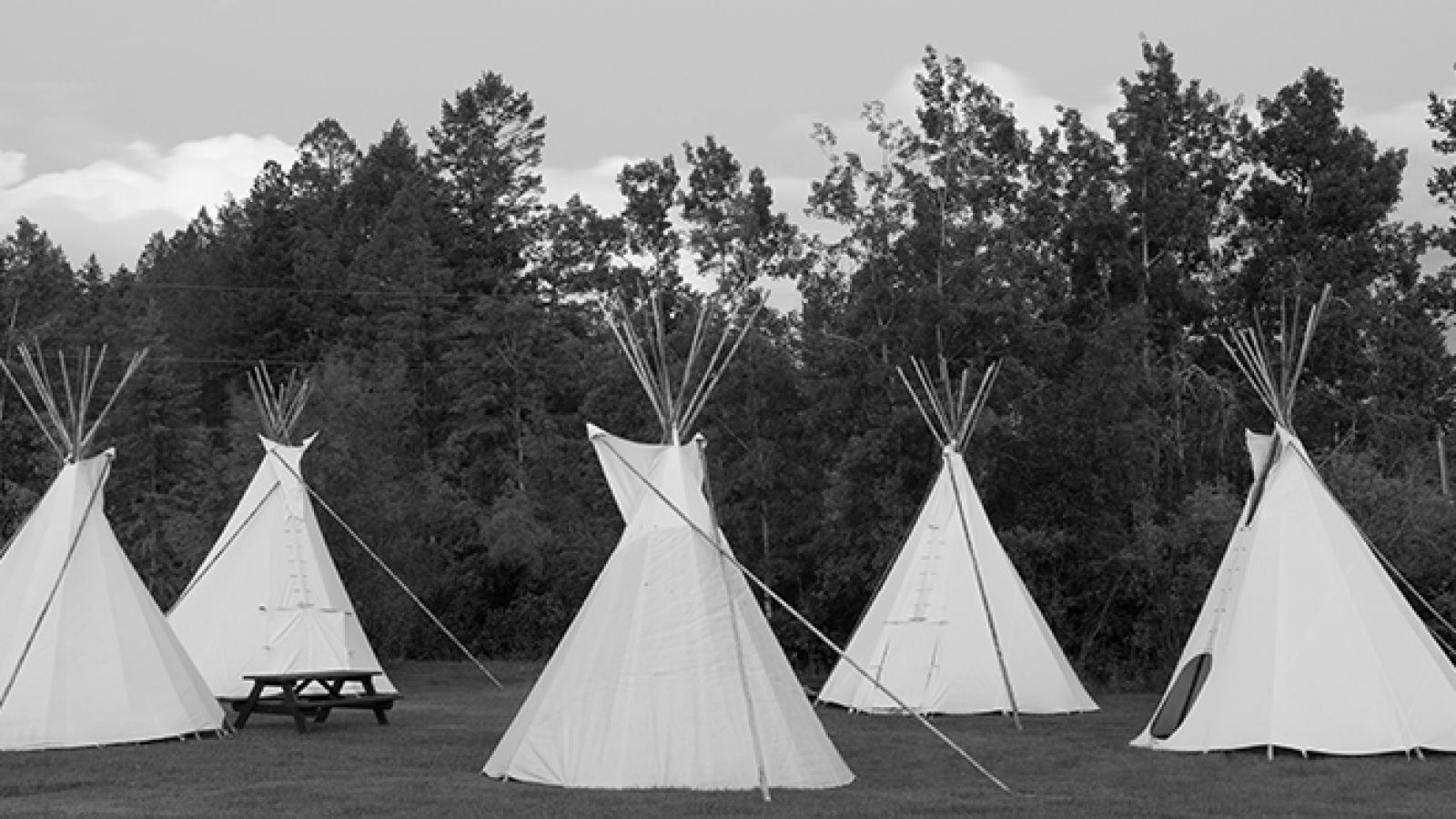 Unique tipi rentals available.