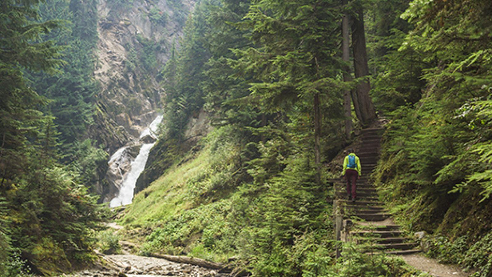 Bear Creek Falls Trail.