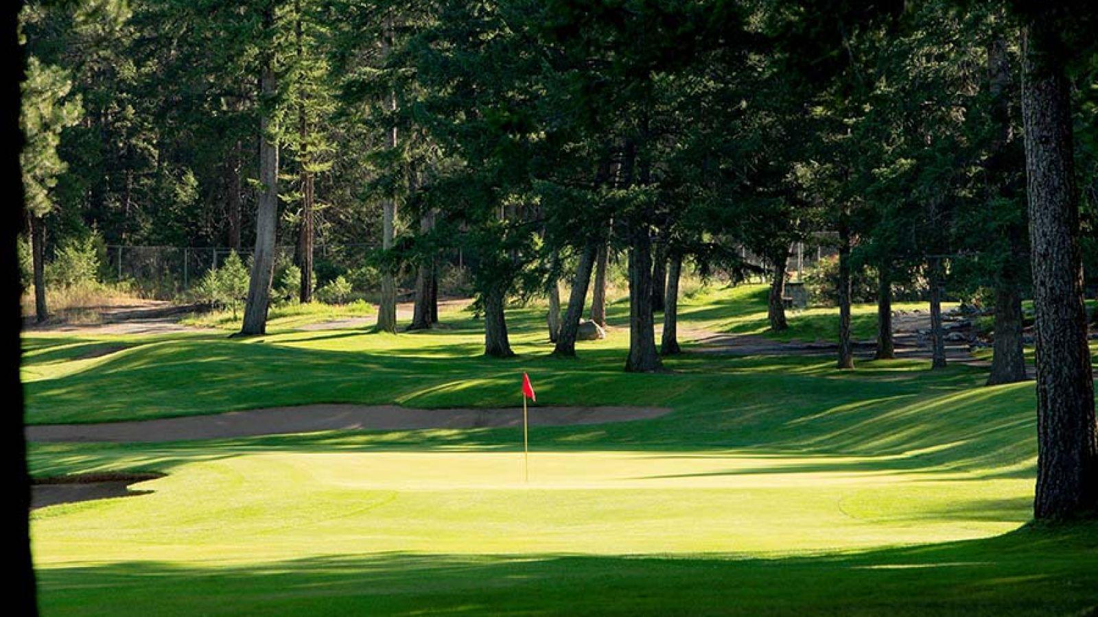 Golf Cranbrook.