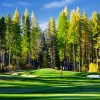 Trickle Creek Golf
