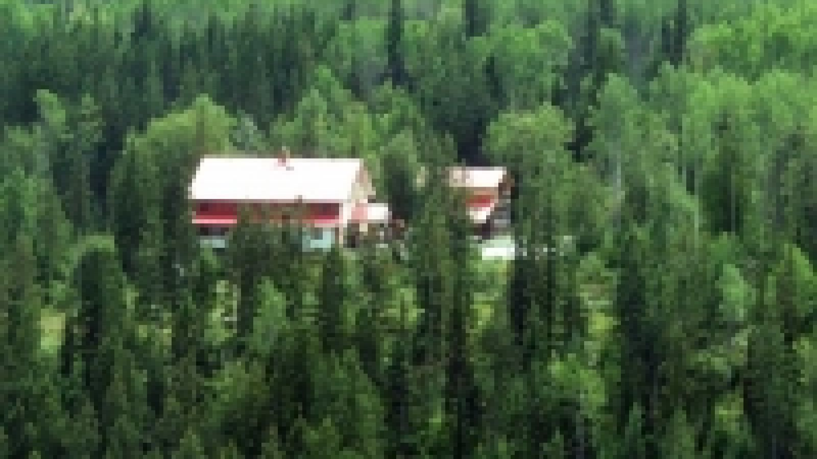 Alpine Meadows Lodge is a peaceful retreat near Kicking Horse Mountain Resort.