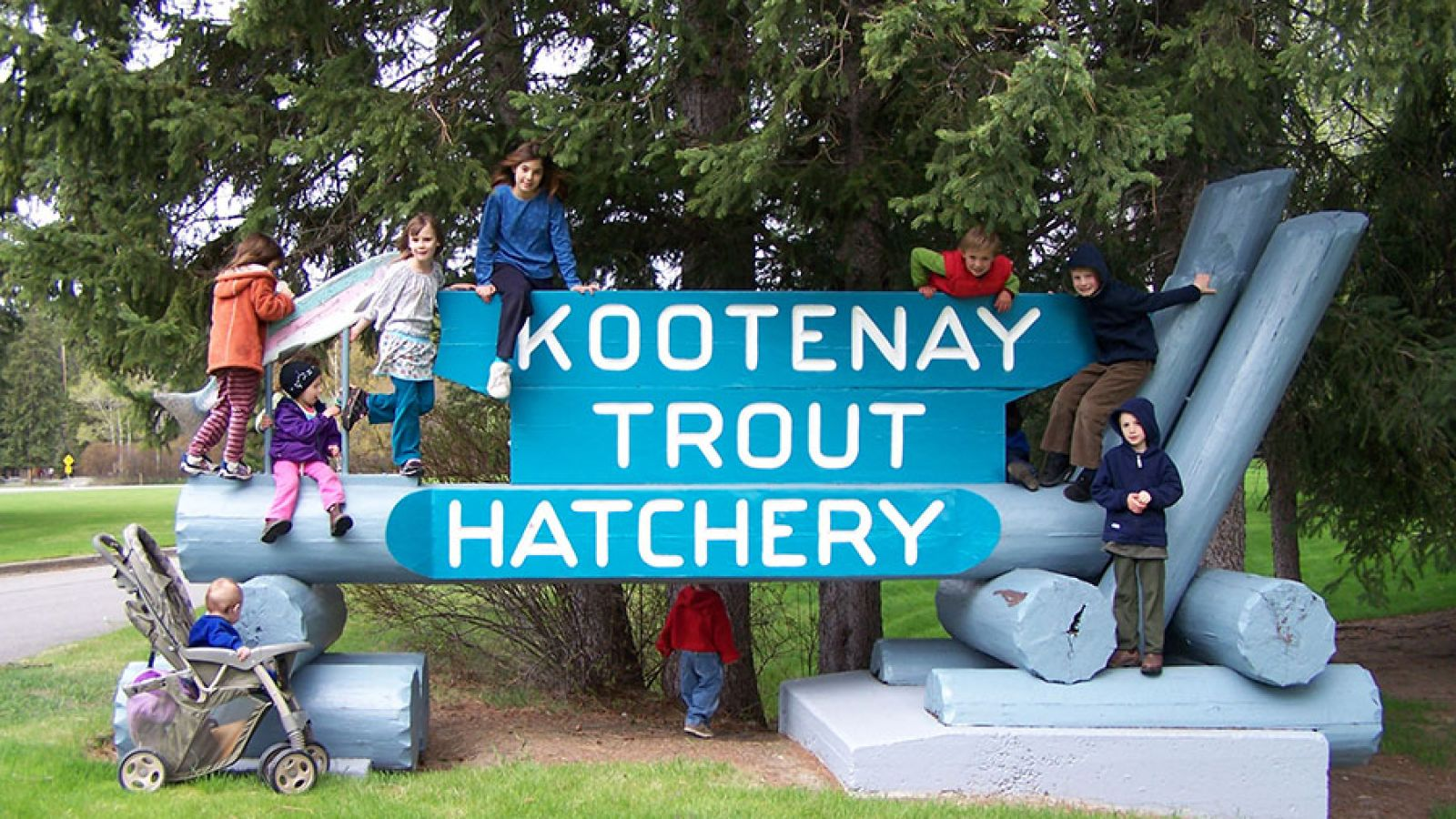 Welcome to the Trout Hatchery.