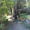 Trailhead to the 2nd lake.