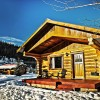 Cozy log cabin accommodation.