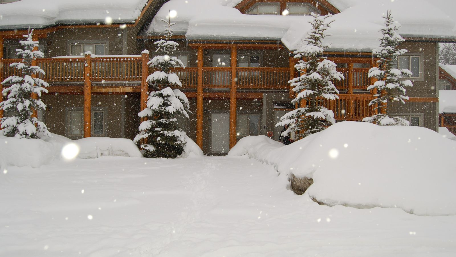 Ski to your door accommodation properties.