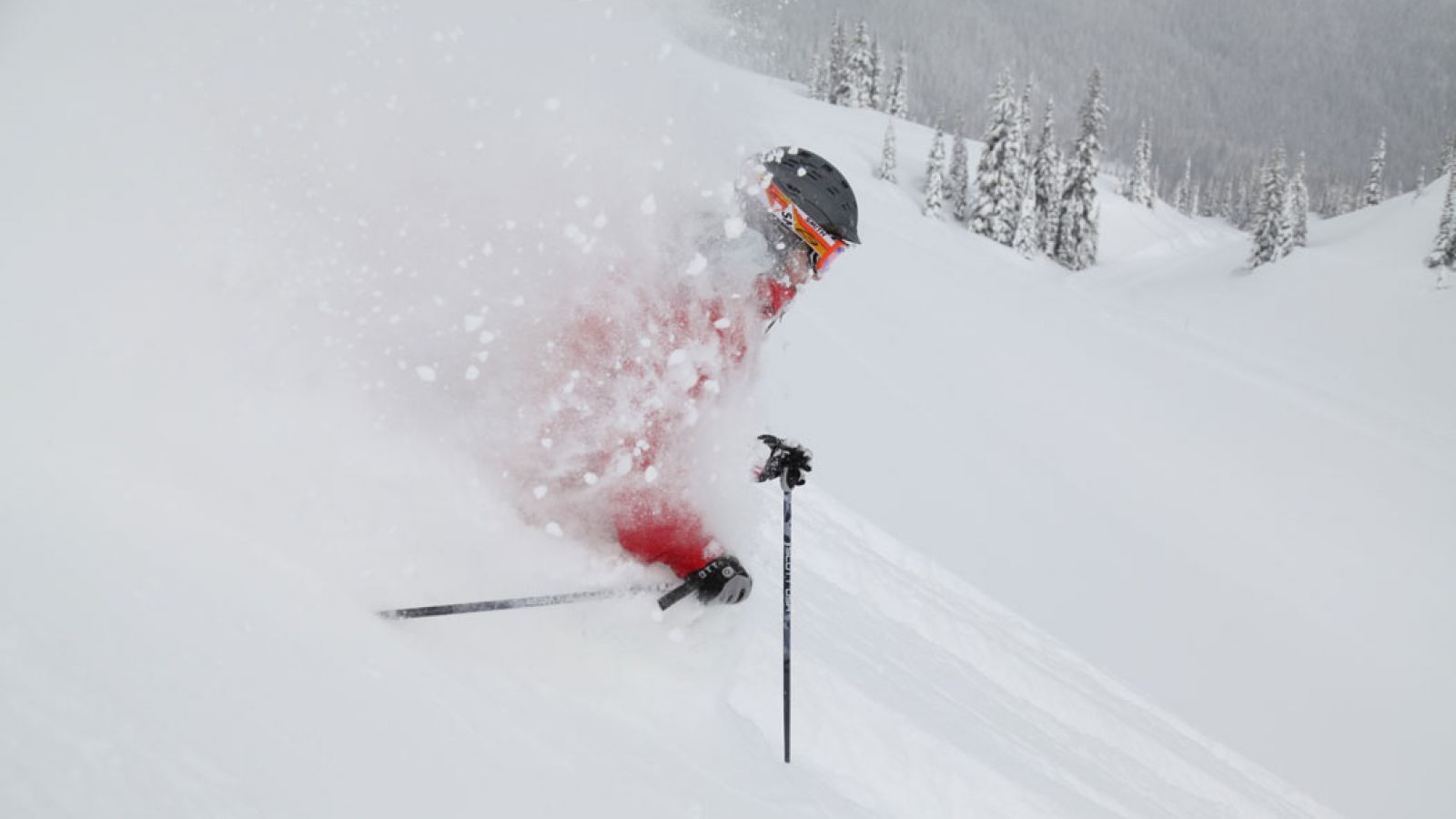 Monashee Powder is a top-ranked powder provider.