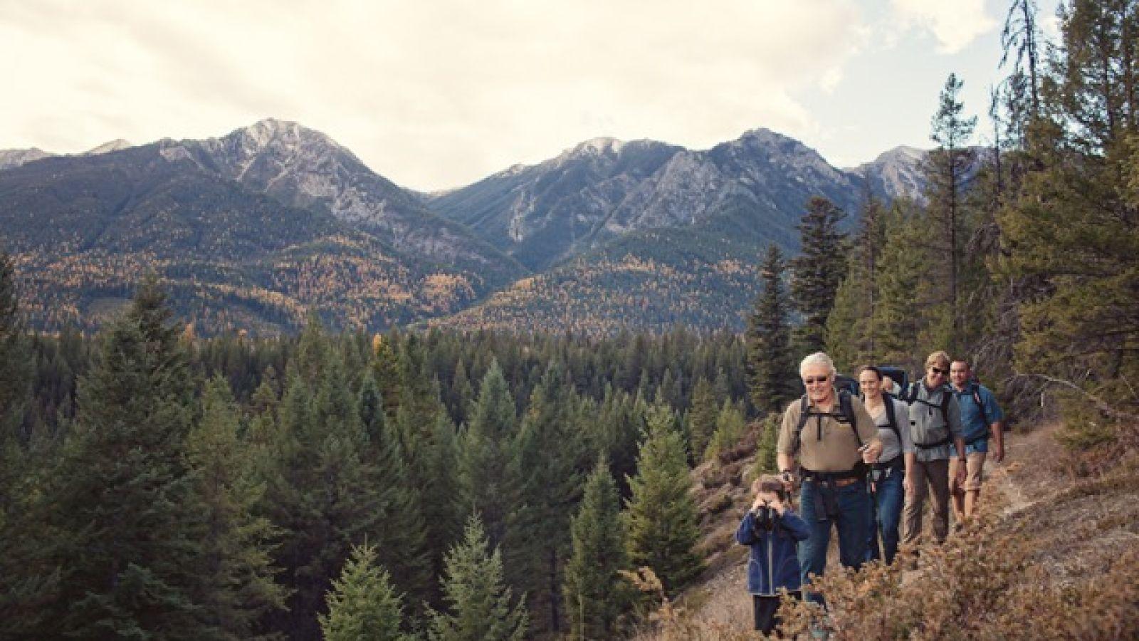 Wonderful hiking trails for everyone.