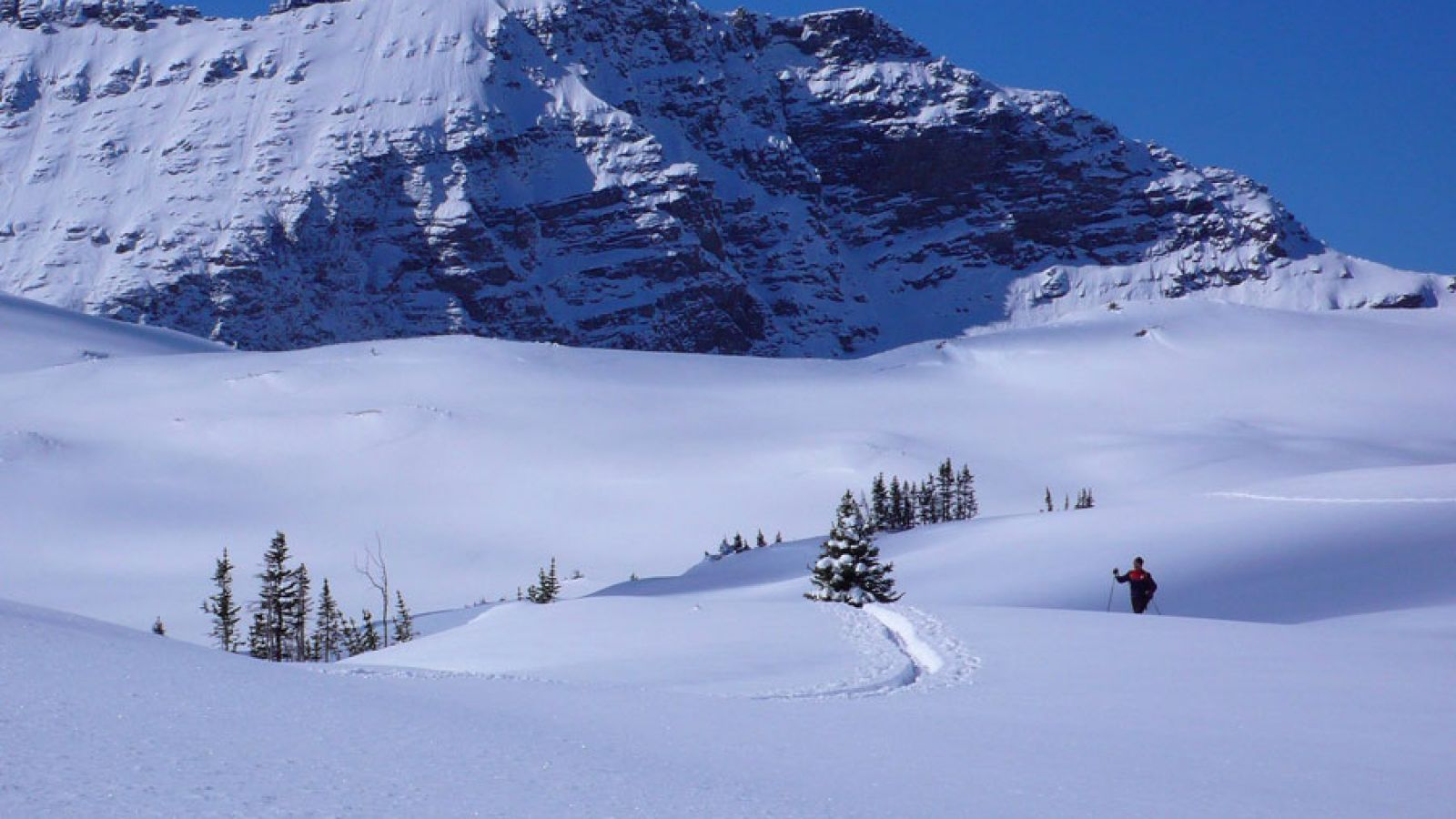 Winter activities include snowshoeing, xc and backcountry skiing.