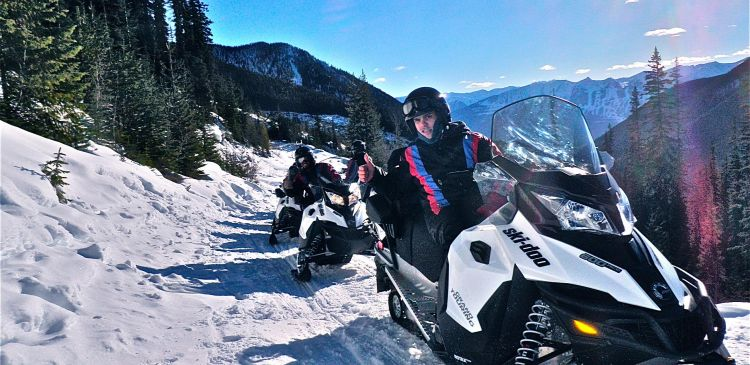 White N Wild Snowmobile Tours