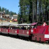 The Express Train approaching the Kimberley Alpine Resort.