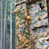 SkyTrek Climbing Wall.