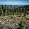 Rossland is home to some of North America's top mountain biking trails.