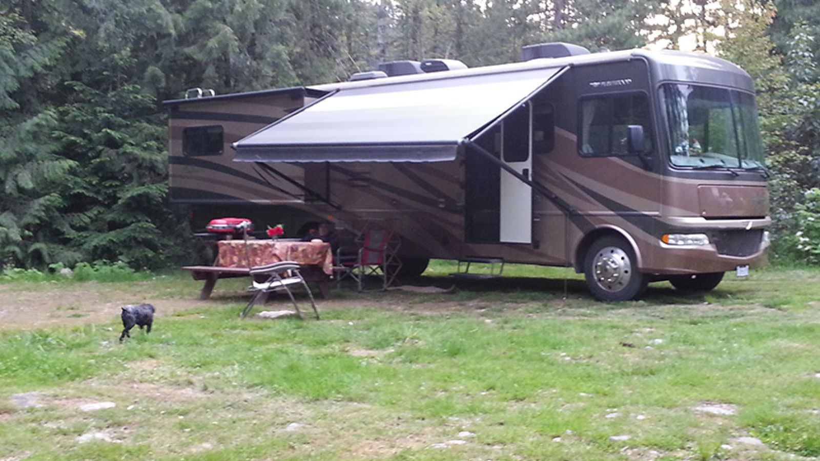 Serviced and treed campsites.