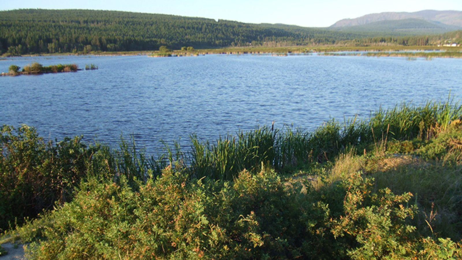 Elizabeth Lake Wildlife Sanctuary.