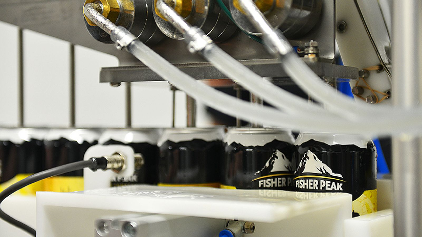 Fisher Peak Brewing Company.