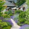 Beautiful gardens and individual patios.