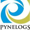 Pynelogs Art Gallery