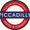 Piccadilly, The