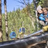 The Pipe - Mountain Coaster Newest Addition to Revelstoke Mountain Resort