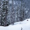 Planning Your Powder Highway Trip: The Local Way