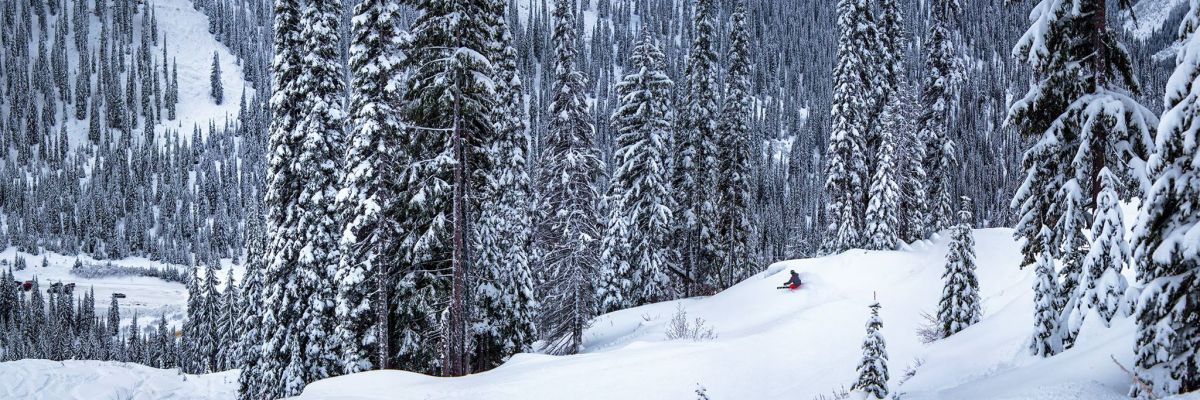 Planning Your Powder Highway Trip: Local Tips