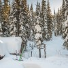 Rossland's Unique Cabins