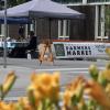 Kootenay Farmers' Markets: Good for the Mind, Body & Soul