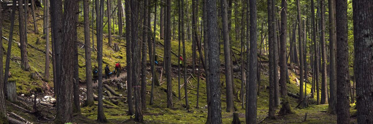 Kaslo Experiences: Between a Lake and a High Place
