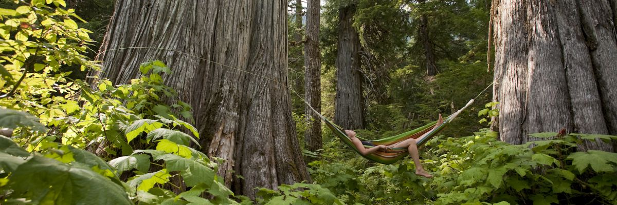 Laid-back Kootenays: Un-Plug and Relax