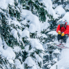 Keefer Lake Lodge: Bringing Snowcat Skiing to a Higher Elevation