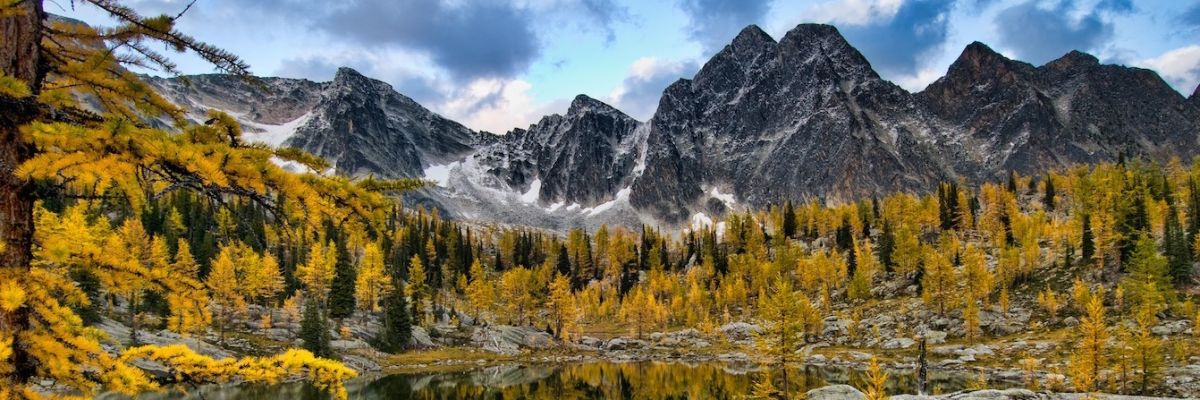 Little Known Fall Secrets – Larches of the Kootenays